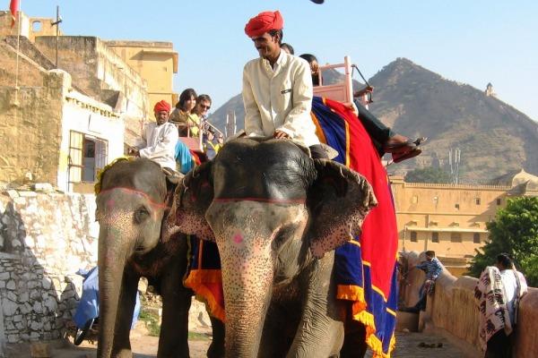 Прививки для путешествия в Индию
